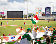 SAN JUAN, PUERTO RICO FEBRUARY 2: Fans for the Mexican team come out strong during the game against Cuba on February 2, 2015 in San Juan, Puerto Rico at Hiram Bithorn Stadium(Photo by Jean Fruth)