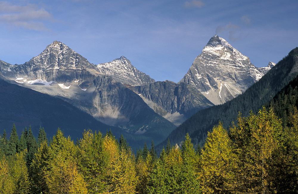 Autumn Colors, Rocky Mountains, Glacier National Park,British Columbia,Canada