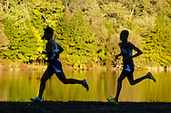 Middletown, New York - Runners compete during a high school cross country race at Fancher-Davidge Park on Oct. 6, 2016.