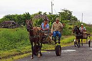 Men on horse carts in Las Tres Palmas, Pinar del Rio, Cuba.