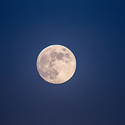 Telephoto image of nearly full moon taken at Katy Prairie, in west Harris County, Texas.