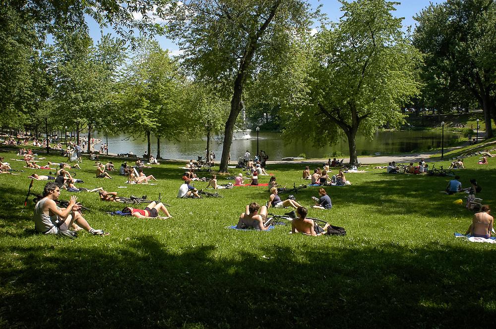 Le parc Lafontaine l'été, Montréal