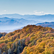 TN/NC: Great Smoky Mountains National Park