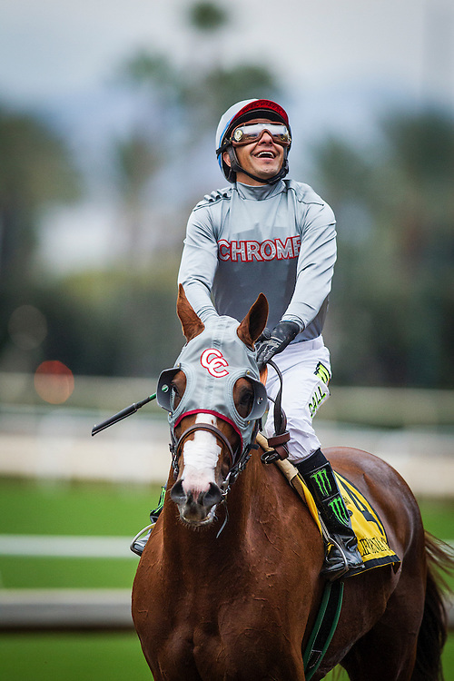 January 09, 2016: Jockey, Victor Espinoza celebrates a victory in the Sham Stakes  aboard California Chrome at Santa Anita Park, Arcadia CA. Evers/ESW/CSM