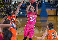 2015-16 A&T Women's Basketball vs FAMU