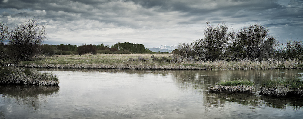 Silver Creek, near Sun Valley Idaho