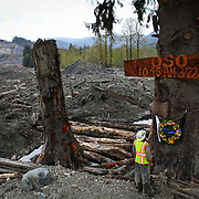 Rescue worker Ben Woodward looks up at a sign commemorating the moment of the Oso mudslide on Monday, April 21, 2014. The wooden memorial was attached to a towering spruce tree, one of the few in the mile-long debris field left standing after the disaster.