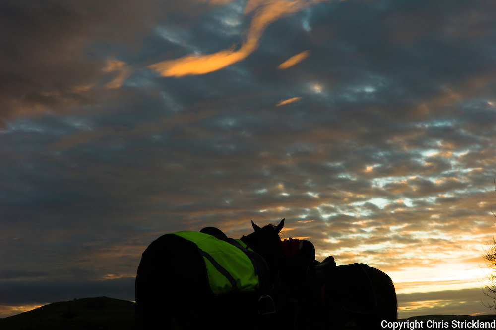 Bonchester Bridge, Hawick, Scottish Borders, UK. 25th November 2015. Trainer Di Walton and Jockey Joanna Walton school racehorses 'Oscar Stanley' and 'Durban Gold' at sunset in the Scottish Borders.