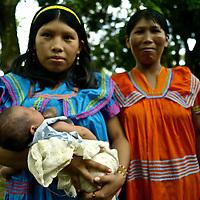 Young mom breast feeding. Indigenous Ngo?be Bugle? Community. Chiriqui. Panama.