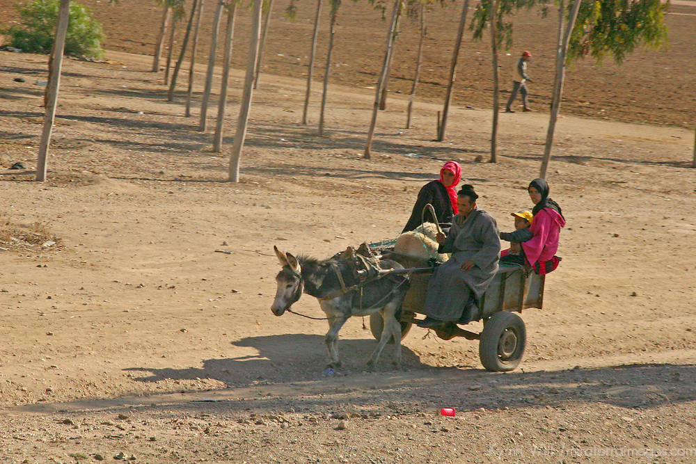 North Africa, Africa, Morocco. Traditional transportation in Morocco.