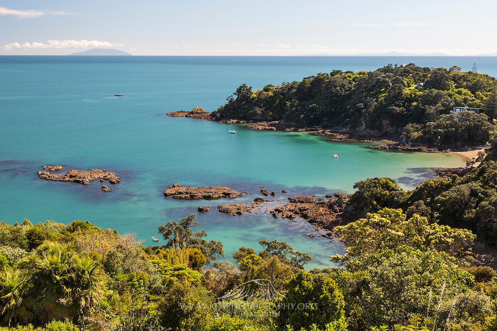 Turquoise waters along the beautiful Waiheke Island, just a quick 45 minutes from Auckland, New Zealand.