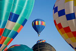 """The Great Reno Balloon Race""- These hot air balloons are part of The Great Reno Balloon Race at San Rafael Park."