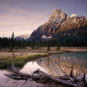 Mount Cephren and the Mistaya River Banff National Park Alberta Canada