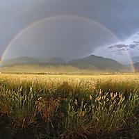 Double Rainbow, Grassland, and the Absaroka Range.Pray, MT