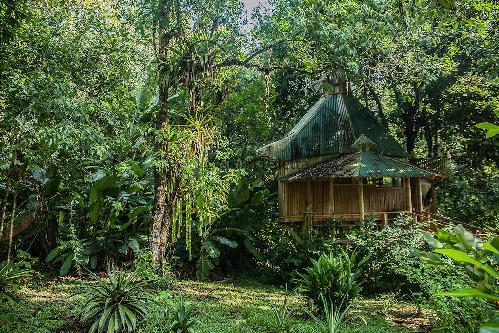 """La Torreluna"" treehouse, at Finca's Base Camp"