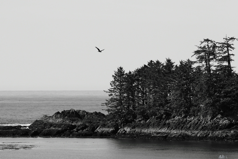 Views of Ucluelet's Little Beach Bay, from the lovely Bostrom's B&B, on Vancouver Island's west coast