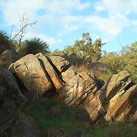 The Darling Ranges lie along the  edge of the Great Plateau of Western Australia in the Southwestern Corner of the State. This group of boulders was photographed in the Mt. Nasura area, about 45 minutes south of Perth.