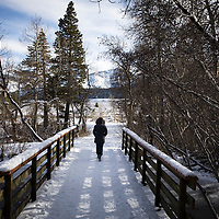 Winter walk in Mammoth Lakes, CA. Please contact legal@toddbigelowphotography.com if you have a licensing request.