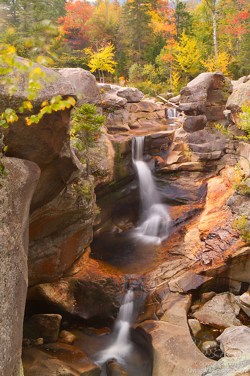 The Bear River plunges about 20 feet over rough granite in one of the largest tiers of Screw Auger Falls in western Maine. Fall color is just beginning to show. This waterfall is located in Grafton Notch. Maine has another Screw Auger Falls located in Gulf Hagas Brook. .