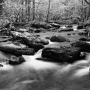 Lower Tremont Creek Cascade Pools- Great Smoky Mountains - Autumn - Black & White