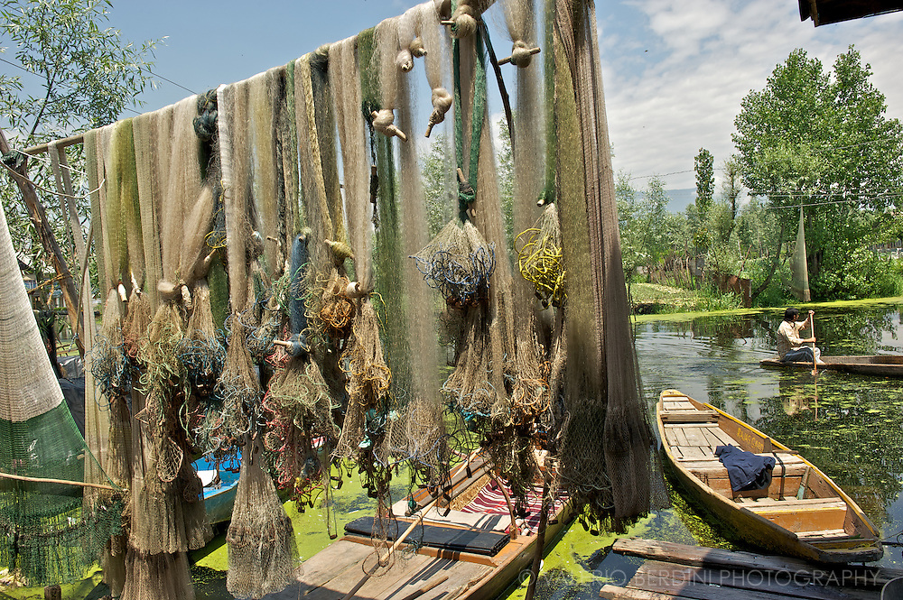 Nets hanged up to dry in front of a fisherman family house along the banks of Dal Lake. Kashmir. India