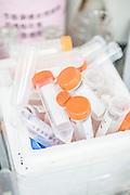 CHINA / Shenzhen /  29/05/2013<br /> <br /> BGI (Beijing Genomics Institute ) , Shenzhen Main Headquarter / Chemistry lab inside the agricultural Institute at BGI <br /> <br /> <br /> &copy; Daniele Mattioli