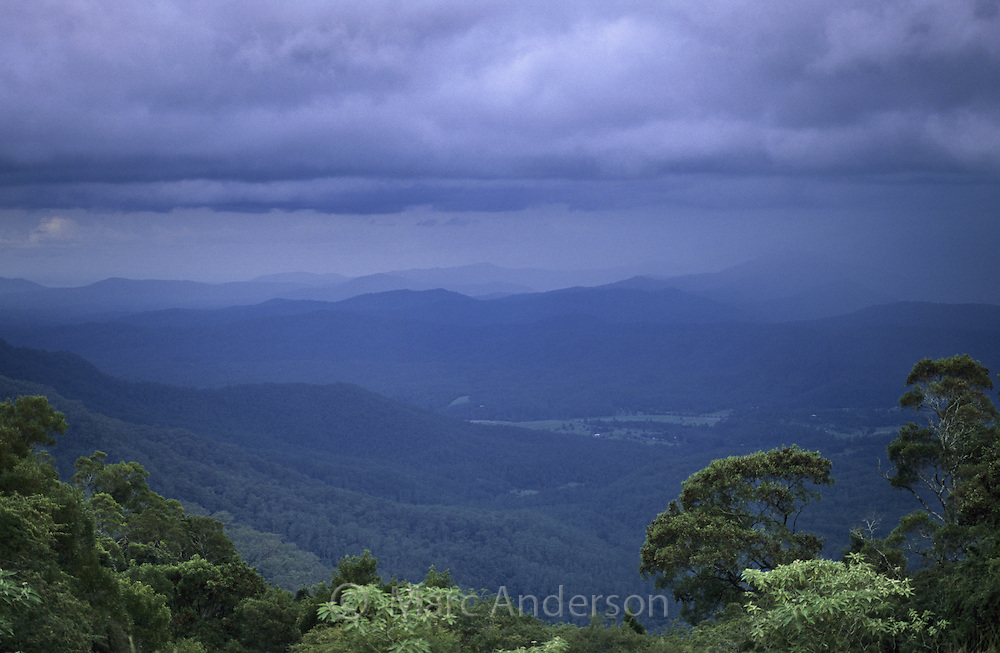 Thunderstorm looming over the rainforest, hills & valleys of Dorrigo National Park, Australia..