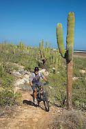 Mexico, Baja California sur, Baja, La Ventana, desert biking near La Ventana MR 0535