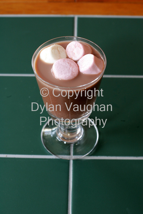 15/12/2004.E McSweeney food for Weekender.Week 86.Desert.Hot Chocolate and Marshmallows.Picture Dylan Vaughan