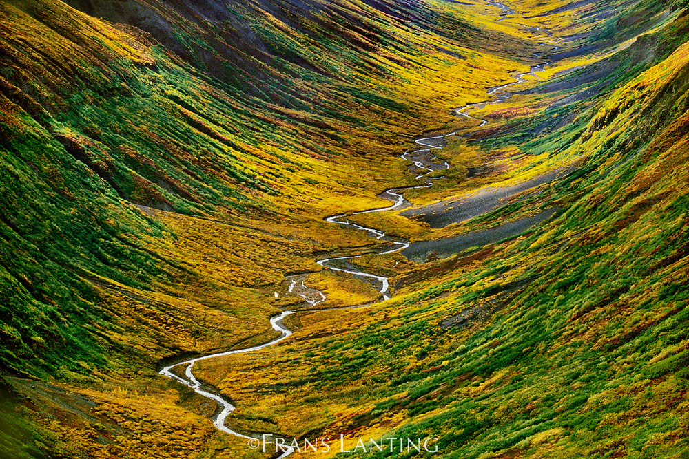 Fall colors in tundra valley (aerial), Wrangell St. Elias National Park, Alaska