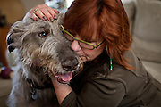 Kathy Bowler embraces her dog Brogan at her Sacramento, California home, March 17, 2013. Brogan, a six-year-old Irish wolfhound. is currently undergoing treatment for osteosarcoma, a fatal bone cancer.