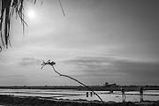 Images of harvesting salt in southern Vietnam.