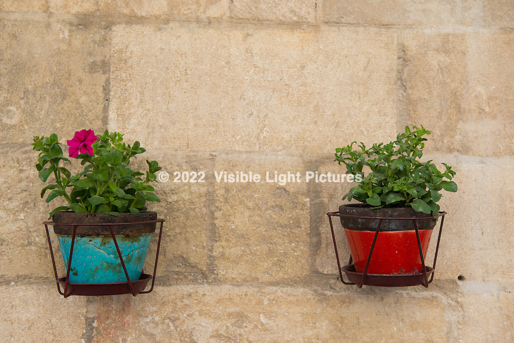 Two flower pots along an alley in the old city at Avignon