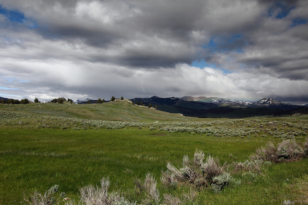 A view of Lamar Valley in Yellowstone National Park, Wyoming
