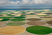 Agricultural - Farming and Ranching