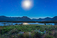 The waxing Moon over the Maskinonge Wetlands at Waterton Lakes National Park, Alberta, June 27, 2015, with flowers in the foreground. Saturn is left of the Moon in Scorpius. This is a single exposure, 13 seconds at f/5.6 and ISO 1600, with the 24mm lens and Canon 6D.