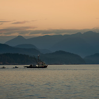 I was lucky enough to take a scouting trip to the Taku Resort on Quadra Island in March. In the morning the fishing boats head out for the day in front of the striking Coast Mountains.