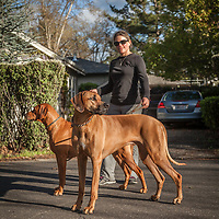"Jennifer Tisa with her Rhodesian Ridgebacks, Flash and Sue, while on a walk in Calistoga.  ""I owned a restraunt in downtown Calistoga...I sold it about two years ago...one more item off my bucket list."""