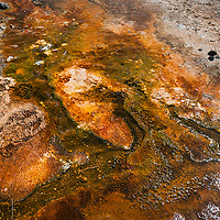 Yellowstone National Park, Black Sands Thermal Spring