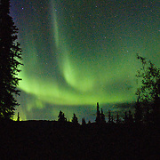 "The northern lights glow after midnight in late August at Teklanika Campground, Denali National Park and Preserve, Alaska. In 1621, Pierre Gassendi named the aurora borealis after the Roman goddess of dawn, Aurora, and the Greek name for north wind, Boreas. Published in ""Light Travel: Photography on the Go"" by Tom Dempsey 2009, 2010."