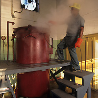 USA, Maryland, Crisfield, (MR) Mike Horsey works in Maryland Crab Meat Co. steaming 30 bushel bins of blue crabs
