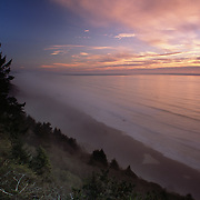 USA, California, Redwoods coast