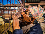 13 MARCH 2017 - PATAN, NEPAL: A Newari man watches workers on the project to rebuild ancient Hindu temples in Patan's Durbar Square. Much of historic Durbar Square was badly damaged in the 2015 earthquake.      PHOTO BY JACK KURTZ