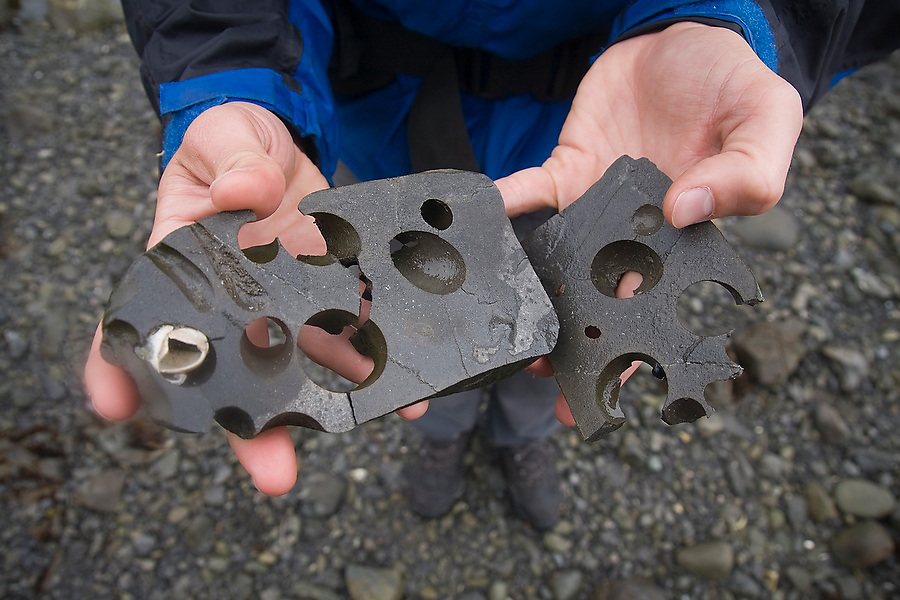 Zach Podell-Eberhardt holds up the pieces of a bizarre rock, riddled with holes formed by erosion, found on the beach between Sand Point and Cape Alava on a backpack of the North Coast, Olympic National Park, Washington.