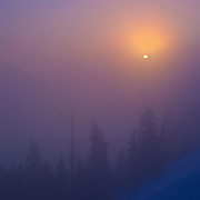 The sun rises through thick fog on a forested slope above Crater Lake in Oregon.