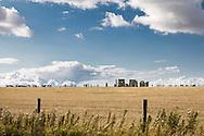 tourist visiting Stonehenge