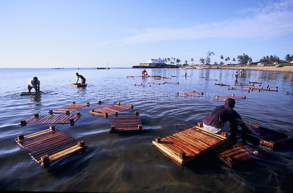 La principale ressource de l'ile est aujourd'hui la p?che artisanale