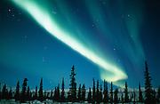 Alaska.  Aurora Borealis in interior AK.