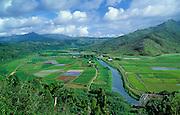 Taro fields, river, bridge, and Hanalei National Wildlife Refuge; Hanalei Valley, Kauai, Hawaii