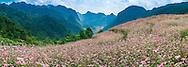 Vietnam Images- Phong cảnh Vietnam-Panoramic landscape